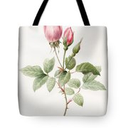 Pink Rose And Buds Tote Bag