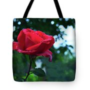 Pink Rose With Dew Drops Tote Bag