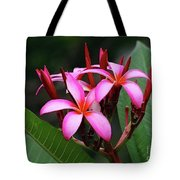 Plumeria Flowers 4 Tote Bag