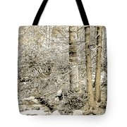 Pocono Mountain Stream, Pennsylvania, Digital Art Tote Bag