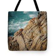 Point Lobos California Tote Bag