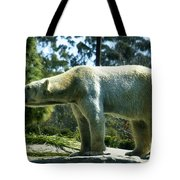 Polar Bear  Tote Bag