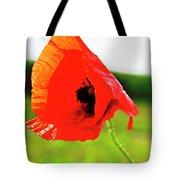 Poppy The Beauty Tote Bag