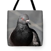 Portrait Of A Pigeon Tote Bag