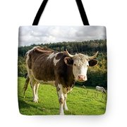 Posing For The Camera Tote Bag