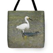 Posing White Egret Bird Tote Bag