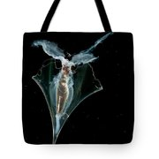 Pteropod Tote Bag