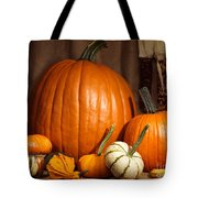 Pumpkins And Gourds Still Life Tote Bag