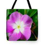 Purple Periwinkle Flower 1 Tote Bag