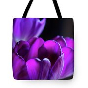 Purple Tulips 1 Tote Bag