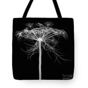 Queen Annes Lace, X-ray Tote Bag