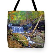 R B Ricketts Falls In Autumn Tote Bag