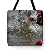 Reaching For It Tote Bag