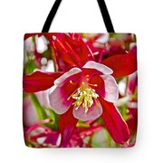 Red And White Columbine At Pilgrim Place In Claremont-california  Tote Bag