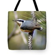 Red Breasted Nuthatch Tote Bag