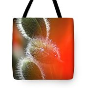 Red Corn Poppy Bud And Red Dots Tote Bag