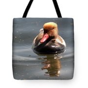 Red-crested Pochard Tote Bag