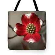 Red Dogwood Tote Bag