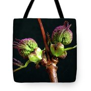 Red Elderberry Flower Buds Tote Bag
