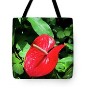Red Flamingo Flower II Tote Bag