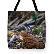 Red-flanked Bluetail 2 Tote Bag