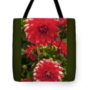 Red Flower Close Up Tote Bag