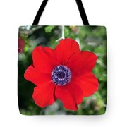Red Anemone Coronaria 1 Tote Bag
