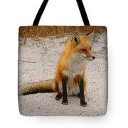 Red Fox 3 Tote Bag