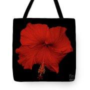 1- Red Hibiscus Tote Bag