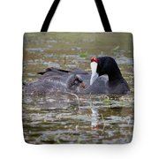 Red Knobbed Coot Tote Bag