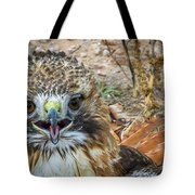 Red-tailed Hawk -5 Tote Bag
