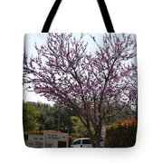 Redbud Tree  Tote Bag