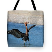 Reddish Egret Tote Bag