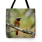 Redstart Tote Bag