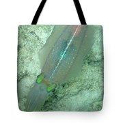 Reef Squid Tote Bag