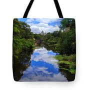 Reflected View 2 Tote Bag