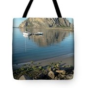 Reflection Anchorage  Tote Bag