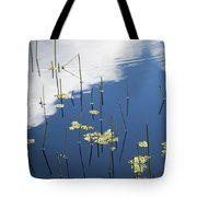 Reflections Tote Bag