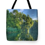 Reflections Of A Weeping Willow Tote Bag