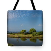 Reflects Tote Bag
