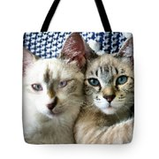 Rescued And Spoiled Tote Bag