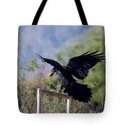Resident Raven Tote Bag