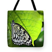 Rice Paper Butterfly 6 Tote Bag