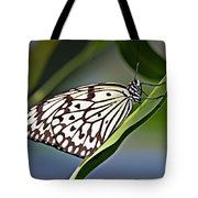 Rice Paper Butterfly 8 Tote Bag