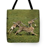 Ring Around The Cheetahs Tote Bag