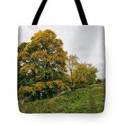 River Swale Tote Bag