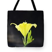 Road Side Beauty Tote Bag