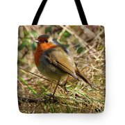 Robin In Hedgerow Tote Bag