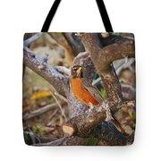 Robin On Cut Down Tree Branch Tote Bag
