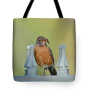 Robin With Worm I Tote Bag